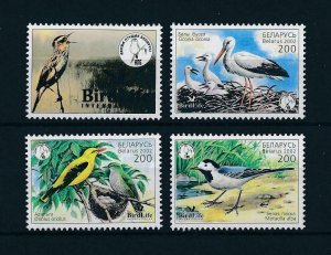[103071] Belarus 2002 Birds vögel oiseaux birdlife From sheet MNH