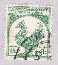 Burma Rooster 15 (AP104915) ...