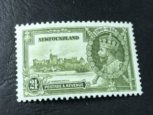 NEW FOUNDLAND # 229-MINT NEVER/HINGED----OLIVE GREEN----1935