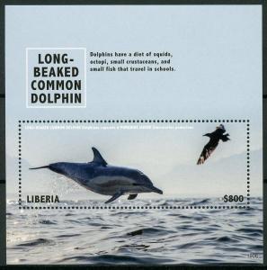 Liberia 2019 MNH Long-Beaked Dolphin 1v S/S Dolphins Marine Animals Stamps