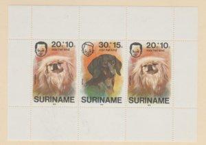 Surinam Scott #B233a Stamps - Mint NH Souvenir Sheet