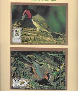 VENDA  1985 SONGBIRDS CYL.BLOCKS U/M PLUS MAXIMUM CARDS