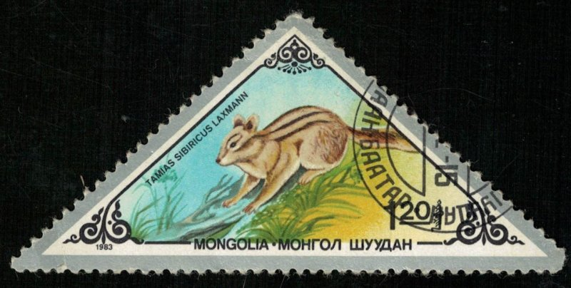 Animal (T-7944)