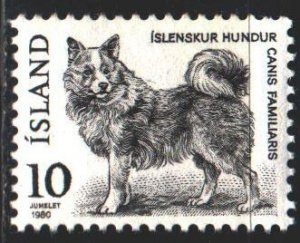 Iceland. 1980. 550 of the series. Dog. MNH.