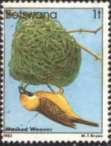 Bird, Masked Weaver, Botswana stamp SC#303 used