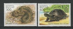 Belarus 2003 Fauna Snakes & Turtles 2 MNH stamps