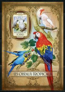 CHAD 2017  TROPICAL BIRDS SOUVENIR SHEET  MINT NEVER HINGED