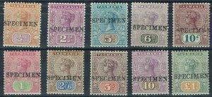 TASMANIA 1892 QV TABLET SPECIMEN SET