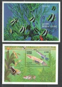 Z0225 SIERRA LEONE FISH & MARINE LIFE TWO-STRIPED PANCHAX ANGELFISH 2BL MNH