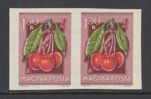 Hungary Sc 1094 MNH. 1945 1.50ft Cherries, imperf horizontal pair, fresh, VF.