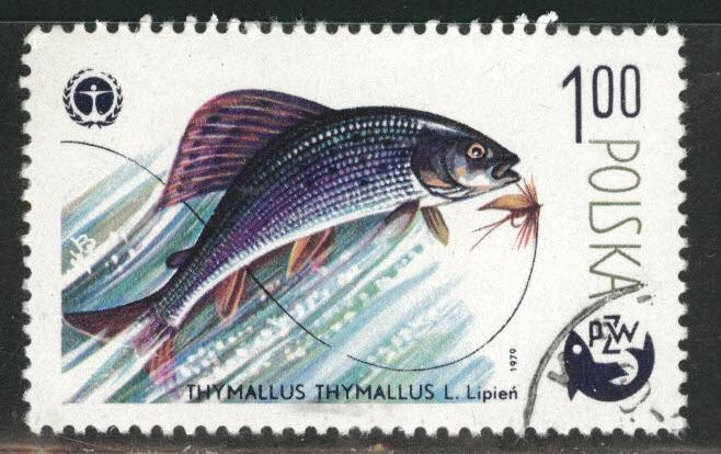 Poland Scott 2329 Used CTO favor canceled Fish stamp 1979