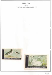 SCOTLAND - BERNERA - 1982 - Birds (53) - Miniature, De Luxe Sheets - MLH