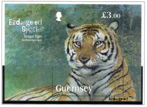 Guernsey Sc 1153 2012 Bengal Tiger souvenir stamp sheet used