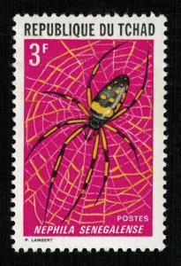 Beetle (TS-2057)