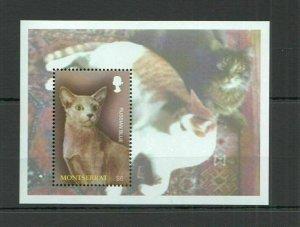 V1392 MONTSERRAT FAUNA PETS CATS OF THE WORLD RUSSIAN BLUE 1BL MNH