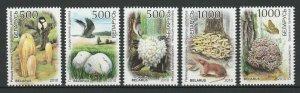 Belarus 2010 Mushrooms & Birds 5 MNH stamps