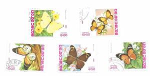 Cape Verde Butterflies 1982