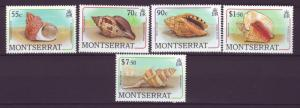 J12033 JL stamps 1988 montserrat mnh from a set #various seashells $11.00+scv