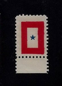 1917 - WWI Service Star Stamp Cinderella Poster Stamp Pat. Nov. 1917 Unused