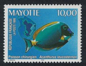 Mayotte Powder-blue Surgeonfish Lagoon Fish 1v SG#91