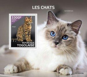 TOGO - 2019 - Cats - Perf Souv Sheet  - M N H