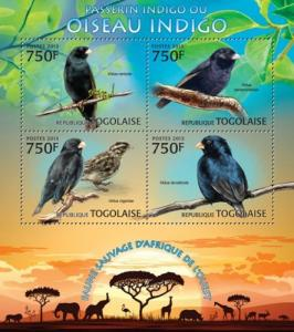 TOGO 2013 SHEET INDIGO BIRDS tg13211a