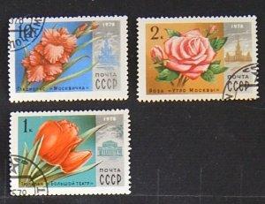 Flowers, USSR, 1978, (1505-Т)
