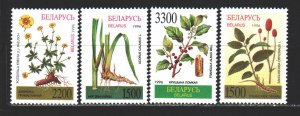 Belarus. 1996. 158-61. Marsh plants, flowers. MNH.