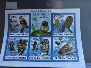 Comoro Islands 2009 Owls  mint never hinged stamps sheet R24109