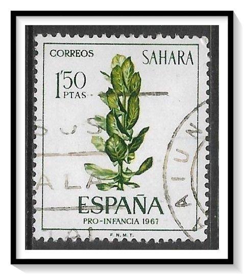Spanish Sahara #175 Flowers Plants Used