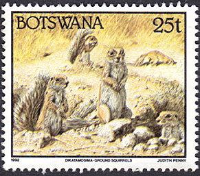 Botswana # 526 used ~ 25t Ground Squirrels