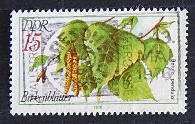 DDR (1552-Т)
