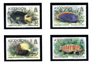 Ascension 262-65 MNH 1980 Fish