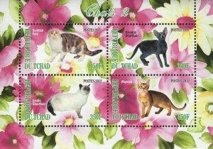 Chad Cats Scotlish Fold Domestic Animal Souvenir Sheet of 4 Stamps Mint NH