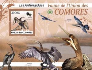 COMORES 2009 SHEET LES ANHINGIDAES ANHINGIDAE DARTERS BIRDS ANHINGA cm9423b