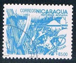 Nicaragua Sugar cane 5 (NP7R404)