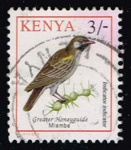 Kenya #600 Greater Honeyguide Bird; Used at Wholesale