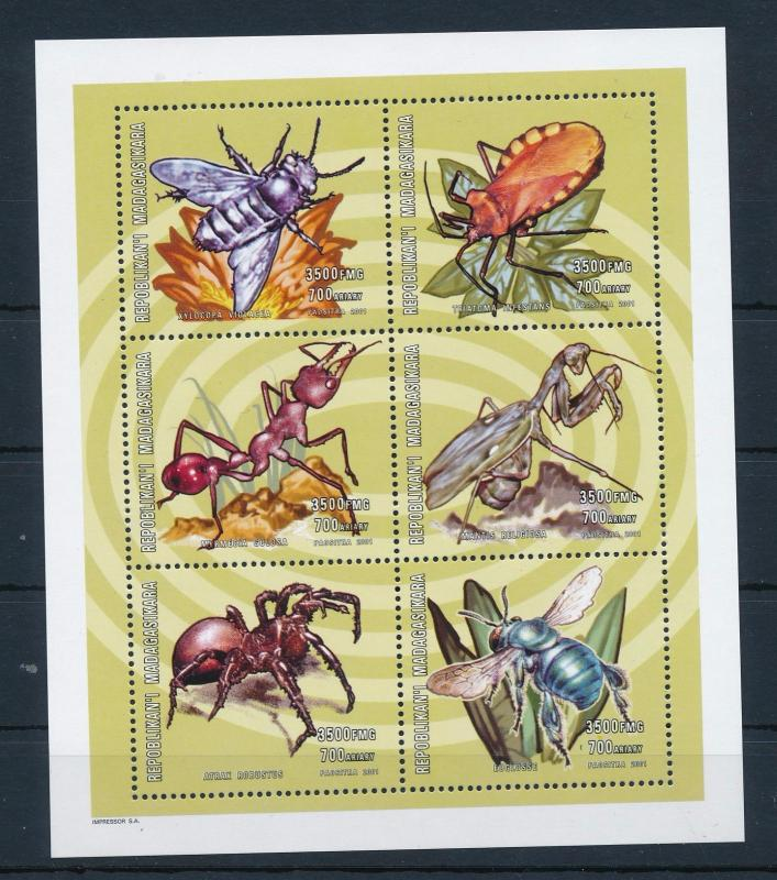 [38811] Madagascar 2001 Insects Insekten Insectes Ant Spider MNH Sheet