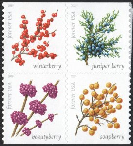 NEW ISSUE (55¢) Winter Berries Block of Four (2019) SA