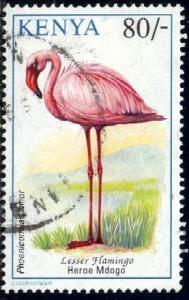 Bird, Lesser Flamingo, Kenya stamp SC#609 used