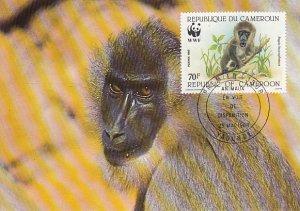 Cameroun 1988 Maxicard Sc #845 70fr Drill baboon WWF