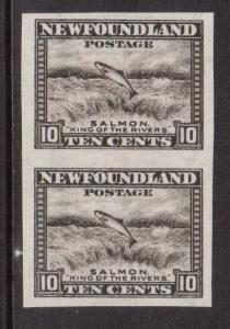 Newfoundland #193a XF/NH Imperforate Pair