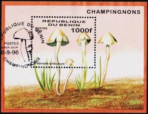 Benin. 1996 1000f Miniature Sheet. Fine Used
