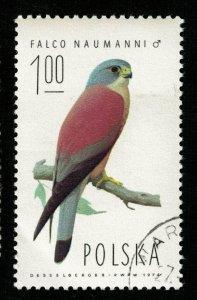 Bird (TS-2023)
