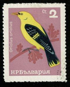 Bird, 2ct (RT-160)