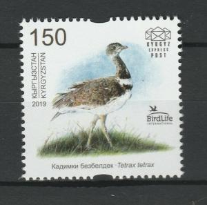 Kyrgyzstan 2019 Birds MNH stamp