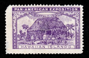 POSTER STAMP 1901 PAN AMERICAN EXPOSITION HAWAIIAN ISLANDS PURPLE MNG (THIN)