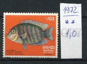 266194 CEYLON SRI LANKA 1972 year MNH stamp FISH