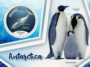 Z08 MLD190305b MALDIVES 2019 Antarctica MNH ** Postfrisch