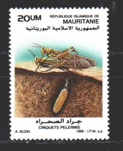 Mauritania. 1988. 951 from the series. Locust insects fauna. MNH.